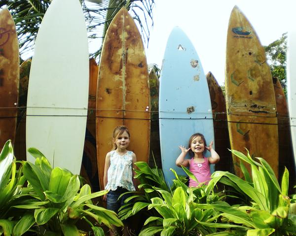 Surfb1140