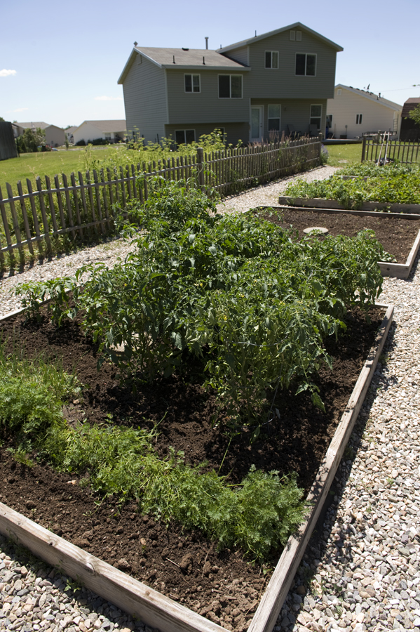 Garden4264
