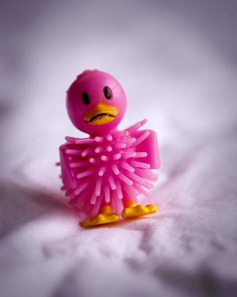Ducky2466